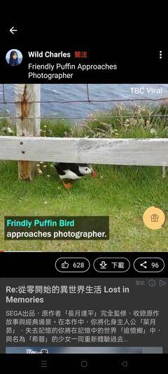 這張圖片的 alt 屬性值為空,它的檔案名稱為 BuzzBreak-視頻02.jpg